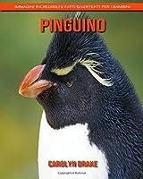 Pinguino: Immagini incredibili e fatti divertenti per i bambini