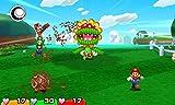 マリオ&ルイージRPG ペーパーマリオMIX - 3DS 画像