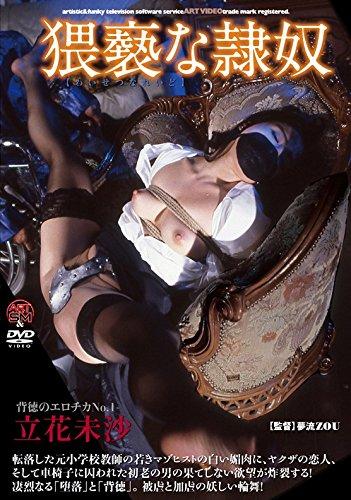 猥褻な隷奴 アートビデオSM/妄想族 [DVD]