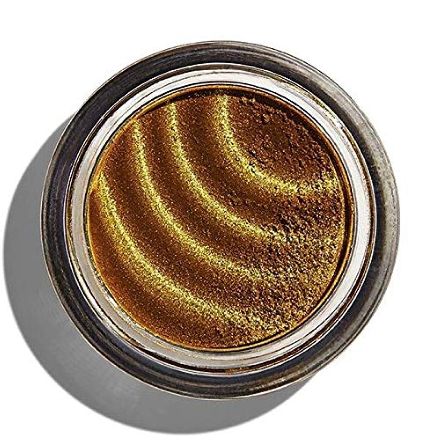 サイレント相対性理論有望[Revolution ] 化粧革命磁化のアイシャドウゴールド - Makeup Revolution Magnetize Eyeshadow Gold [並行輸入品]