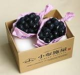 週末セール ぶどう 長野県 ナガノパ-プル(ぶどう) 種なし 1kg前後(2房)