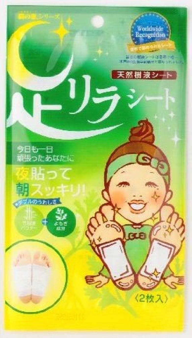 中国ボトルホーム足リラシート ヨモギ2枚