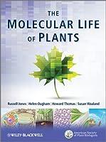 The Molecular Life of Plants
