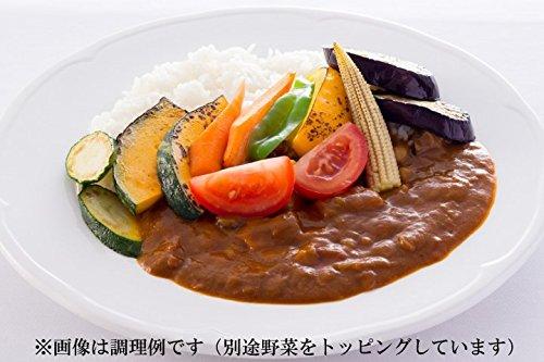 脂質ゼロなのに旨みたっぷりなノンオイル野菜カレー&きのこカレー 各1食お試しセット