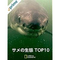 サメの生態 TOP10