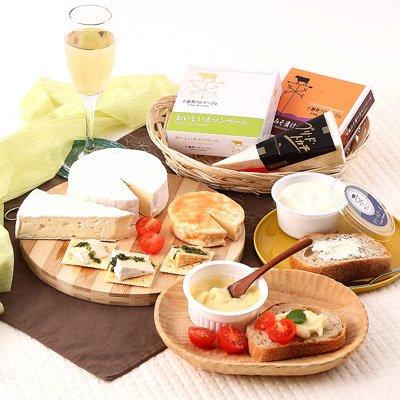 十勝野フロマージュ こだわりチーズ5点セット 株式会社十勝野フロマージュ・北海道