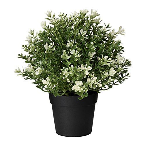 IKEA/イケア FEJKA:人工観葉植物22 cm タイム(403.751.67)