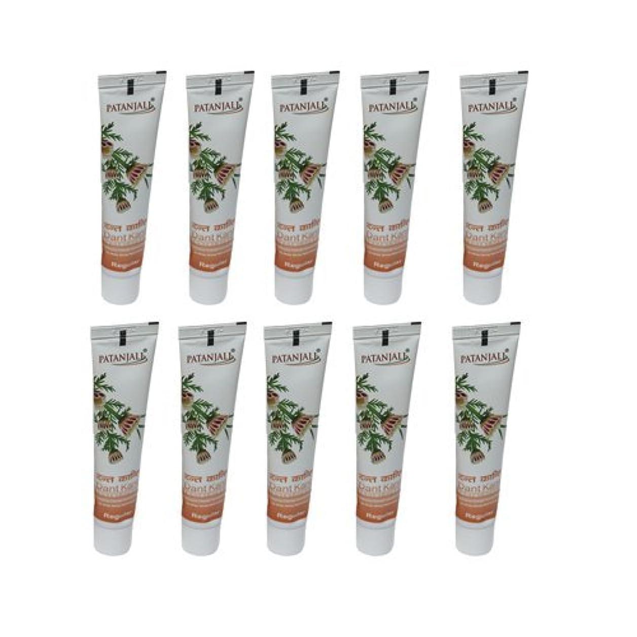 上陸思いつくディーラー10 x Patanjali Dant Kanti Toothpaste Dental Cream 100gm (Pack of 10) [並行輸入品]
