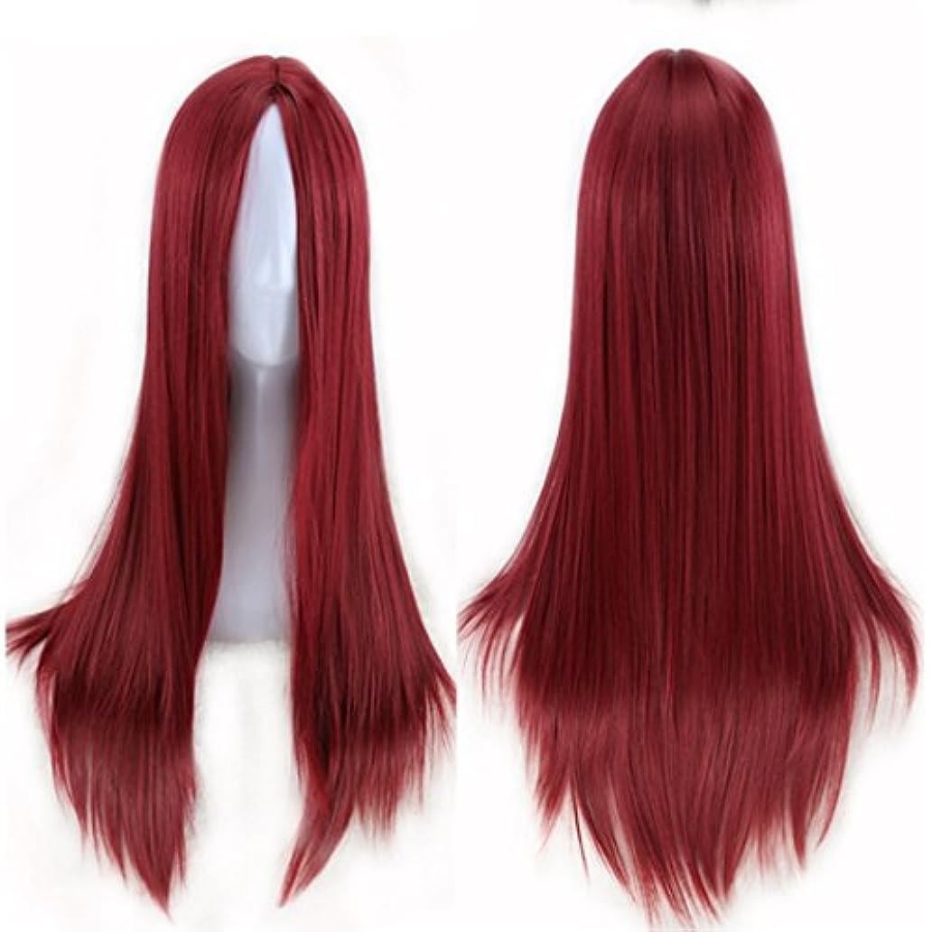 無駄な相関するギャップJIANFU 人々 パーティー パフォーマンス かつら ミドルワンウィッグ 耐熱 長い ストレート かつら 65cm(マルチカラー) (Color : Wine red)