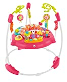 Best ベビーJumperoos - Fisher-Price Pink Petals Jumperoo by Fisher-Price Review