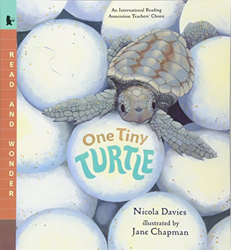 One Tiny Turtle: Read and Wonderの詳細を見る