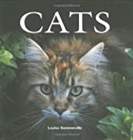 Cats (Flexi cover series)