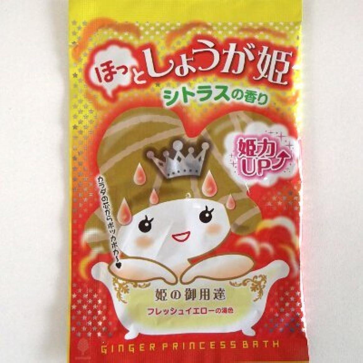 強調ピケ自治紀陽除虫菊 ほっとしょうが姫 シトラスの香り【まとめ買い12個セット】 N-8401