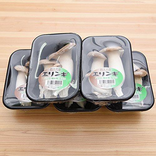 九州産 (長崎) エリンギ 5パック 新鮮 生 キノコ 産地直送