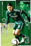 パニーニJリーグエディション第1弾/PFL-J01-191/松本山雅FC/BAN/田中 隼磨