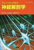 フィッツジェラルド神経解剖学