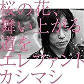 桜の花、舞い上がる道を(初回盤B)(DVD付)