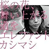桜の花、舞い上がる道を(初回盤B)(DVD付) 画像