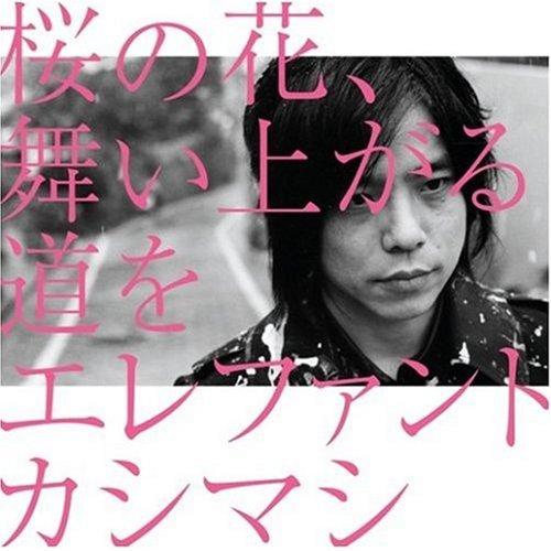 桜の花、舞い上がる道を(初回盤B)(DVD付)の詳細を見る