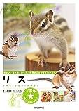 リス:住まい、食べ物、接し方、病気のことがすぐわかる! (小動物☆飼い方上手になれる!)