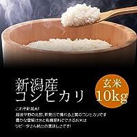 新潟産コシヒカリ 玄米 10kg[即日発送]/冷めても美味しい新潟米