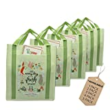EcoJeannie 5 Pack X-Large X-Strong Non-woven shopping Tote Bag Made from Minimum 10% Recn Reusable Sycled Plastic w/Pocket Bottom Board &Reinforced Nylon Handle(NWS051) [並行輸入品]