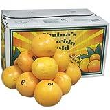 【箱売り】グレープフルーツ ルビー 36玉?48玉 [フロリダ・南アフリカ・オーストラリア] 【業務用・大量販売】 [その他]