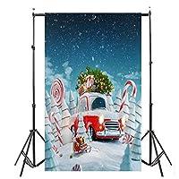 クリスマス 背景幕 ビニール 壁 3x5フィート デジタル背景 写真スタジオ リビングルーム ウォールデカール Free Size ブラック LY
