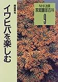 イワヒバを楽しむ (家庭園芸百科) 画像