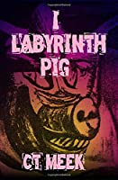 I LABYRINTH PIG: Inspired by Dylan Thomas, William Burroughs, and mental health issues.
