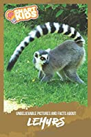 Unbelievable Pictures and Facts About Lemurs