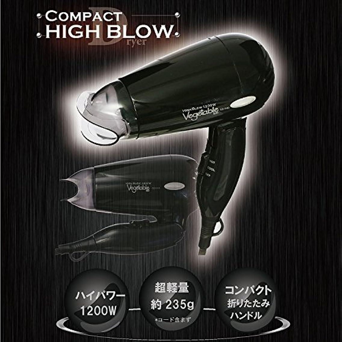 ロードハウス雇ったダウンVegetable コンパクト ヘアドライヤー ブラック GD-H10