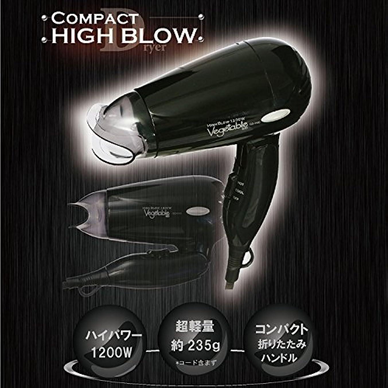疾患からかうシリーズVegetable コンパクト ヘアドライヤー ブラック GD-H10
