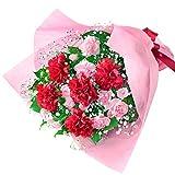 花キューピット【母の日ギフト】カーネーションの花束mt01yr-521269 女性 母 祖母 誕生日 お祝い 記念日 プレゼント