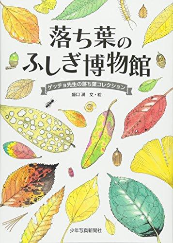 落ち葉のふしぎ博物館—ゲッチョ先生の落ち葉コレクション