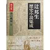 春の戴冠 3 (辻邦生歴史小説集成 第9巻)