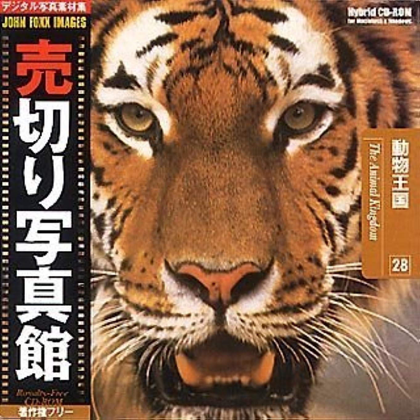 許さない教える光電売切り写真館 JFIシリーズ 28 動物王国