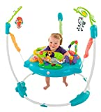 Best ベビーJumperoos - Fisher-Price Musical Friends Jumperoo by Fisher-Price Review