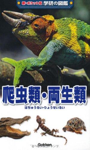 爬虫類・両生類 (新ポケット版学研の図鑑)