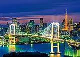 216ピース ジグソーパズル お台場の夜景-東京 スモールピース (18.2x25.7cm)