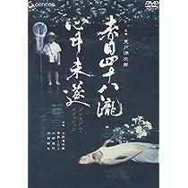 赤目四十八瀧心中未遂 プレミアム・エディション [DVD]