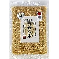 ファームきくち きくち発芽玄米
