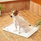 オーエフティー クリアレット トレー&メッシュセット 透明 犬 トイレ デザイナーズトイレ 滑り止め付き ワイドシーツ対応 サイズ(約) 幅58×奥43×高6.5cm クリア 画像