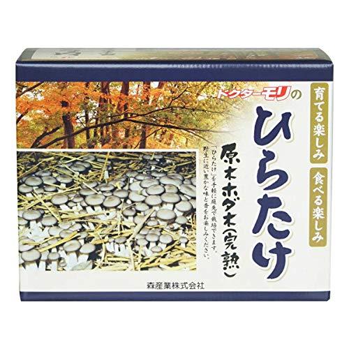 ヒラタケ栽培 【ひらたけの成る木(短木)】
