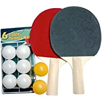 Ping Pong Paddlesのセット4 with 16ボール。