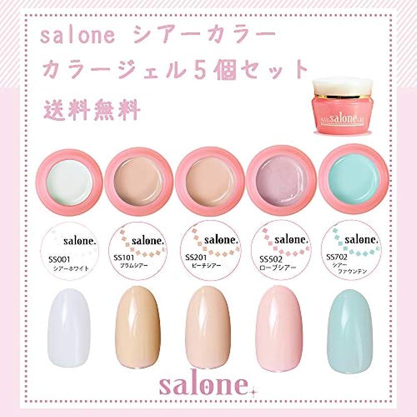最小化する鏡まどろみのある【送料無料 日本製】Salone シアーカラーカラージェル5個セット アンニュイでグラデーションにもピッタリなカラー
