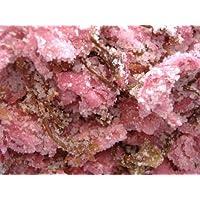国産八重桜使用 極上桜花塩漬 1kg