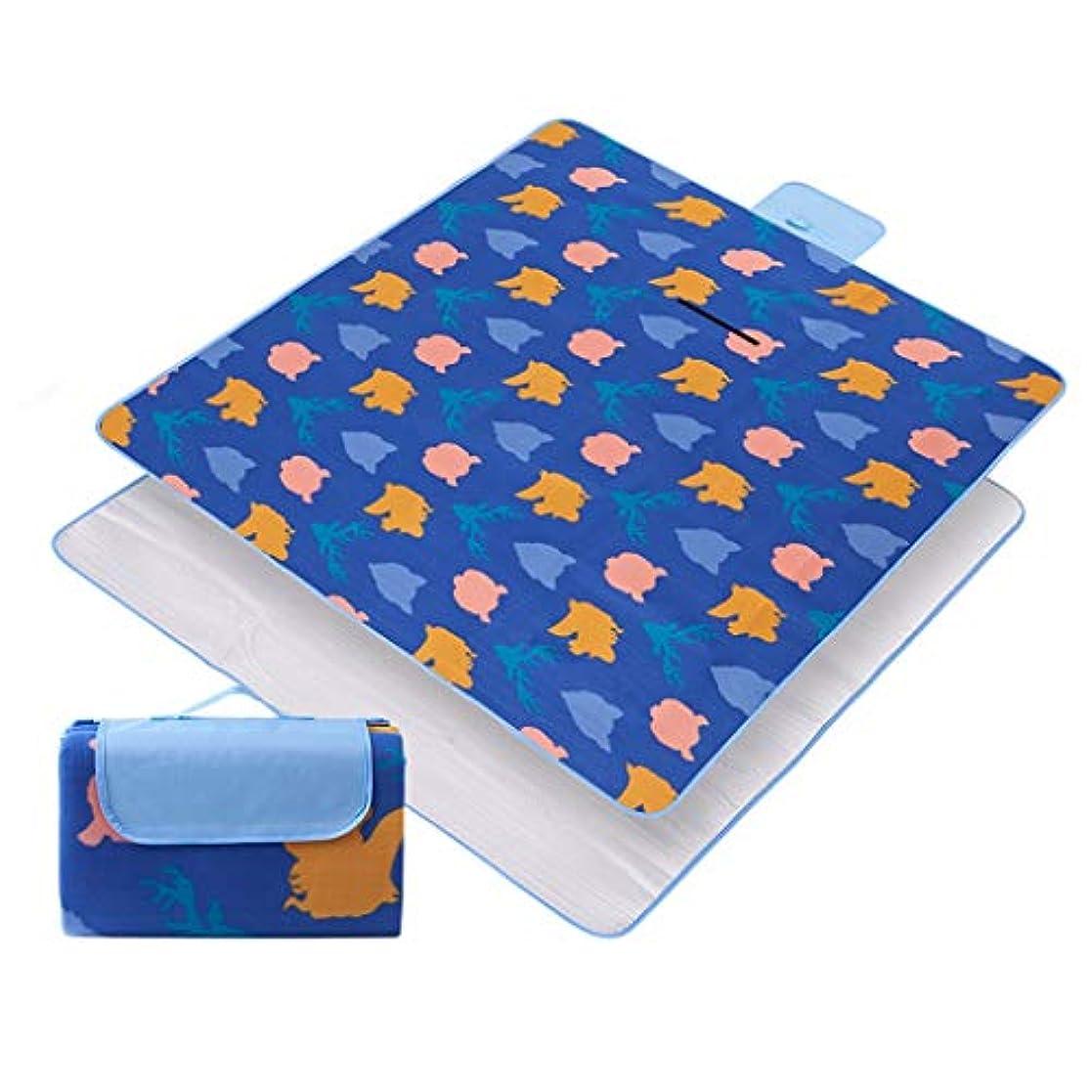 銀行真実大学院携帯用屋外のカーペットのマット、ピクニック毛布、浜のマット、日除けのカーペット、キャンプのためのサンドプルーフ屋外 (Color : C, Size : 150x200cm)