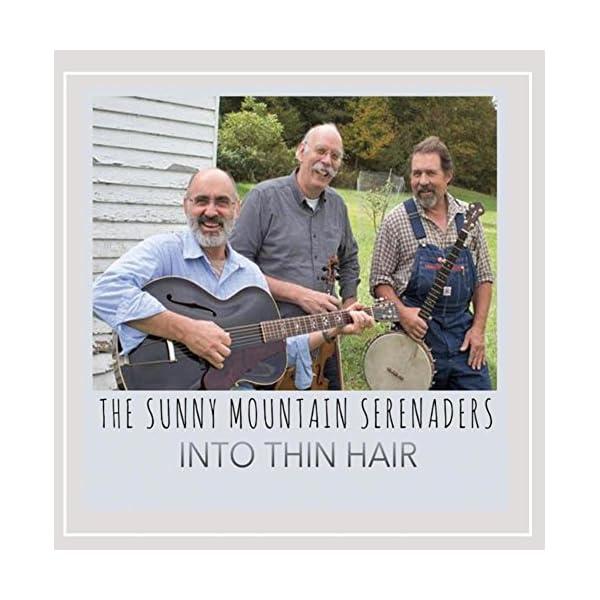 Into Thin Hairの商品画像