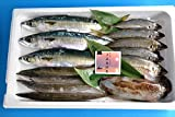 【送料無料】直送!おたのしみ鮮魚パック3500